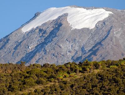 This is the view at the Kilimanjaro from southeast, tropic vegetation in the for